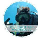 RACHAEL_PROFILE